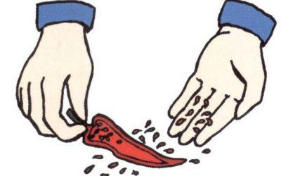 Conserver les semences