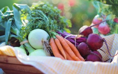 Conserver les légumes-racines