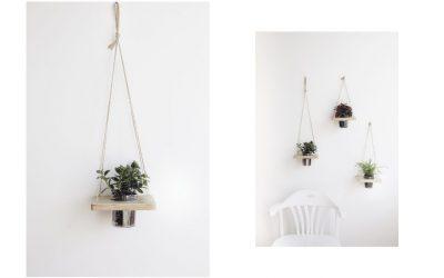 Décorer avec les plantes