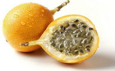 À la découverte d'un fruit exotique!
